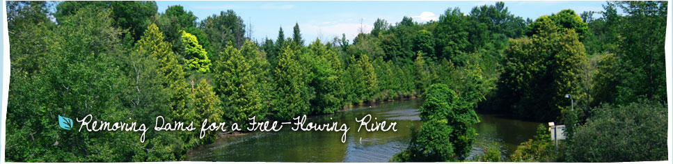 Restore the river to a more natural state as a free-flowing, cold-water river.